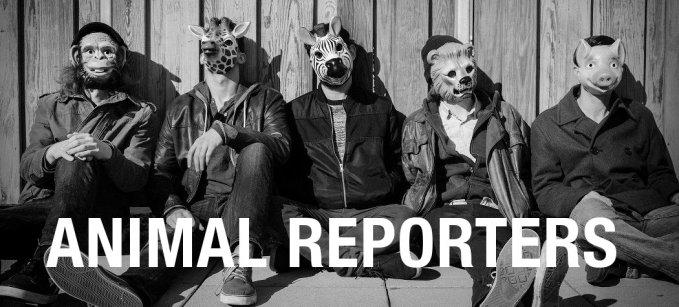 animal reporters